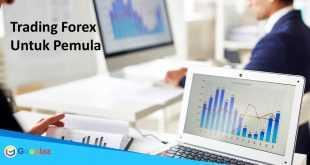Mengenal Lebih jauh trading forex untuk pemula